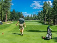 The Benefits of Using Netting in Golf Courses