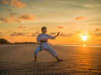 The Things You have to Know about Martial Arts